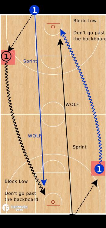 1v1wolf